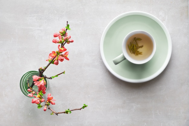 Springtime flat lay, cup of green tea and japanese quince flowers on a grey stone,