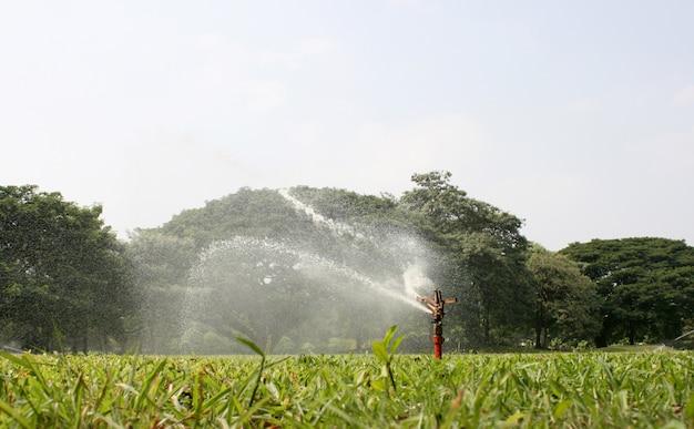 Sprinkler head watering the grass in garden