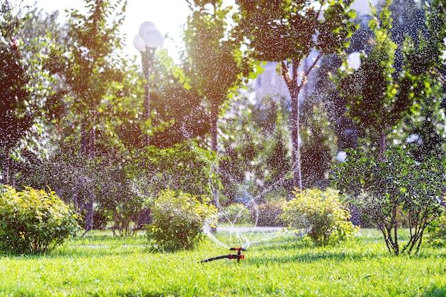 Спринклерная головка поливает газон зеленой травы