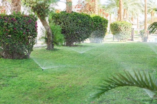 Дождеватель в саду поливает газон. концепция автоматического полива газонов.