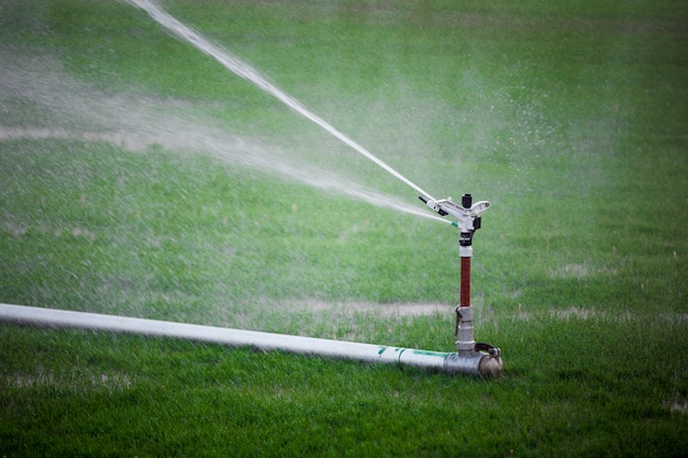 Sprinkler irrigating the field