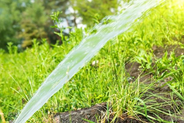 Спринклерный полив свежей зеленой газонной травы в летнем саду под утренним солнечным светом