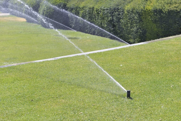 Sprinkler watering the lawn in a park