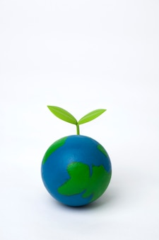 Sprout on globe on white