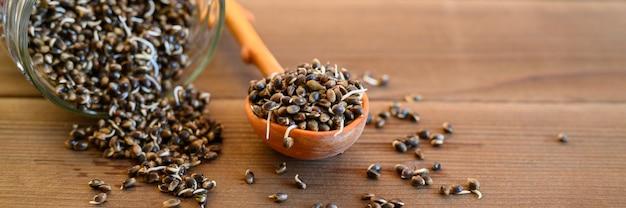 木製のスプーンと木製の背景にガラスの瓶に発芽した食品大麻の種子。バナー