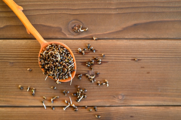 木製の背景に木のスプーンで発芽食品大麻種子