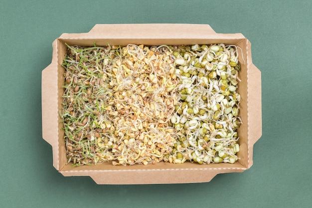Проросшие зерна пшеницы, гороха и маша в картонной таре. зеленый фон. плоская планировка