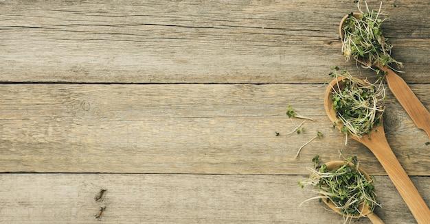 Проросшие зеленые ростки чиа, рукколы и горчицы в деревянной ложке на серой поверхности из старых досок, вид сверху. полезная добавка к пище, содержащей витамины c, e и k, копировальное пространство