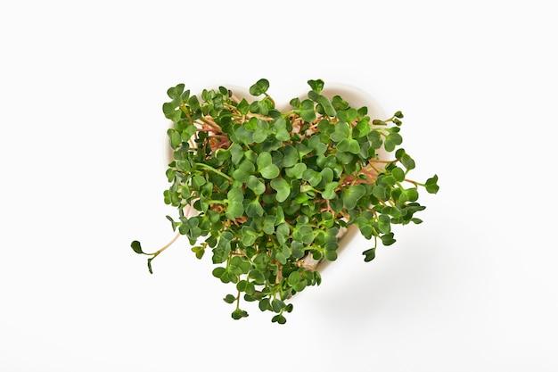 Проросшие микрозелени редиса в тарелке в форме сердца, изолированные на белом фоне. вид сверху