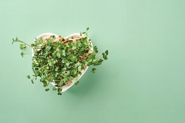 Проросшие микрозелень редиса в тарелке в форме сердца на зеленом фоне. вид сверху