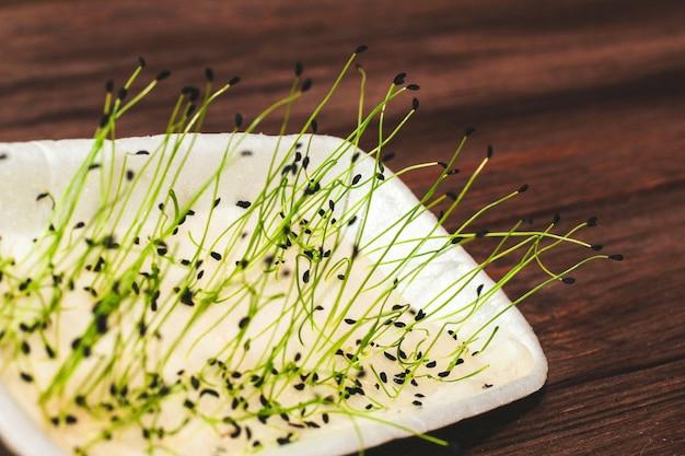 건강과 다이어트를 위한 싹이 튼 슈니트 양파 씨앗. 집에 있는 마이크로그린.