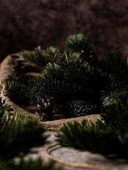 Еловая ветка. красивая еловая ветка с иголками.