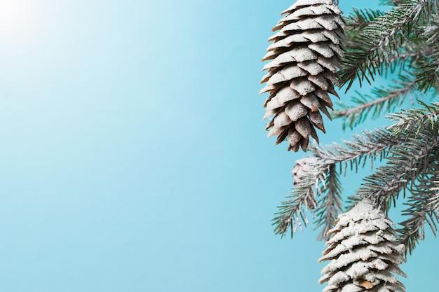 雪の中でコーンとトウヒの枝。クリスマスの準備