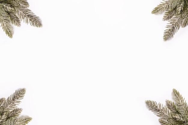 白のミニマリズムの背景にトウヒの枝のフレーム。クリスマス作文