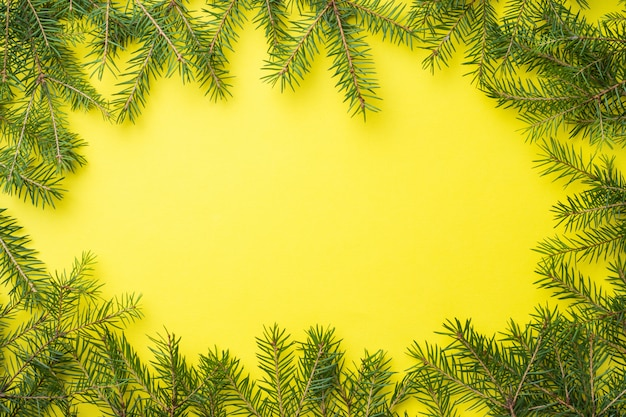 Spruce branches frame on yellow
