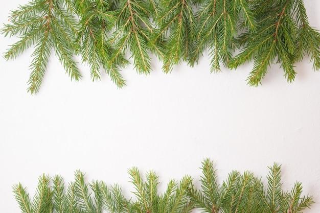 Еловые ветки сверху и снизу на белом фоне, вид сверху место для копирования, рамка из свежих натуральных еловых веток