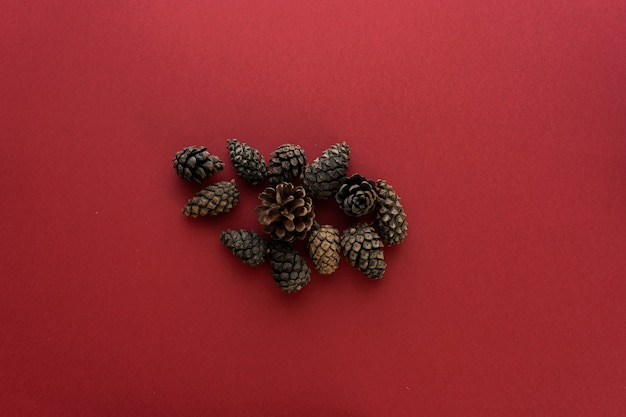Spruce cones on a red background. flat lay, top view, space for text