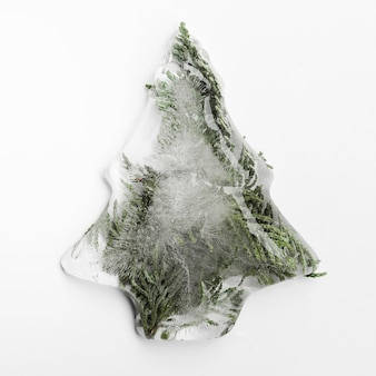Spruce needles in ice in form of christmas tree