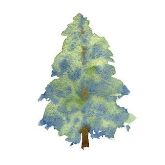 白い背景の上のトウヒ。手描きの冬の木。水彩イラスト。
