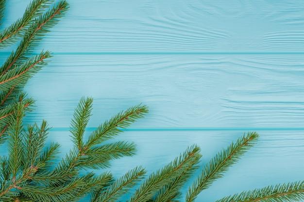 색상 배경에 가문비나무 나뭇가지 테두리입니다.