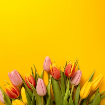 Square background with a bouquet of tulips on an yellow background. flat lay, top view with copyspace.