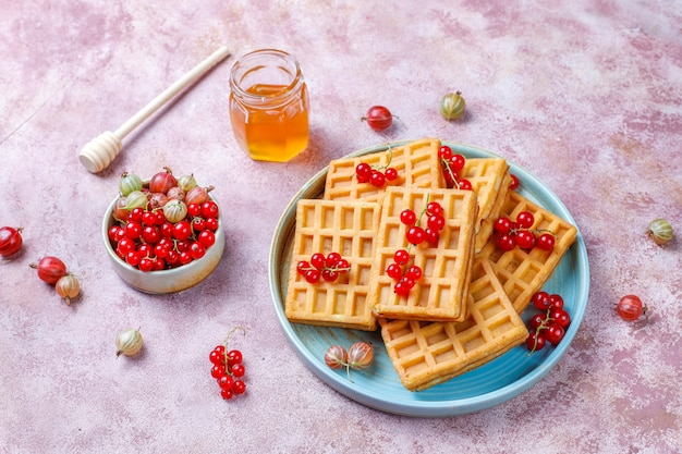 Square belgian waffles with loquat fruits and honey.