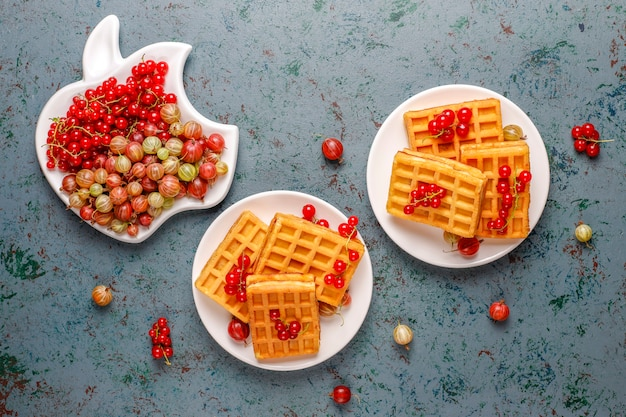 Cialde belghe quadrate con frutti di loquat e miele.
