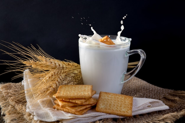 Square biscuit cracker with fresh milk
