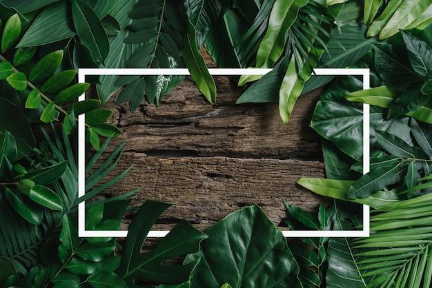 Квадратная рамка креативный макет из тропических цветов и листьев с бумажной карточкой flat lay
