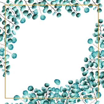 흰색 격리된 배경에 녹색 유칼립투스로 둘러싸인 사각형 프레임이 있습니다. 수채화 그림