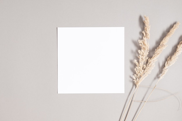 Square invitation card mockup with dried grass on gray background flat lay top view copy space