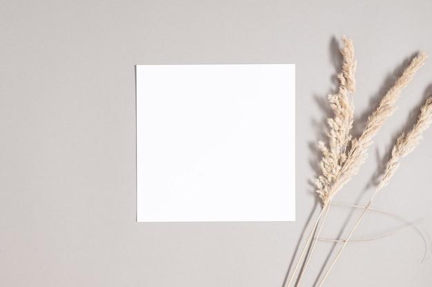 회색 배경에 마른 풀이 있는 정사각형 초대 카드 모형 평면 평면도 복사 공간