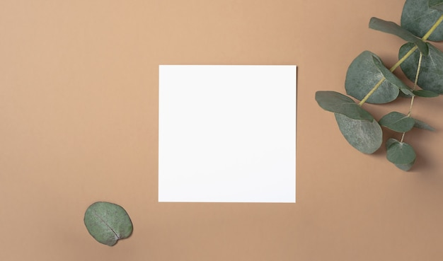 Square invitation card mockup with a eucalyptus branch. top view with copy space, pastel beige background. template for branding and advertising.