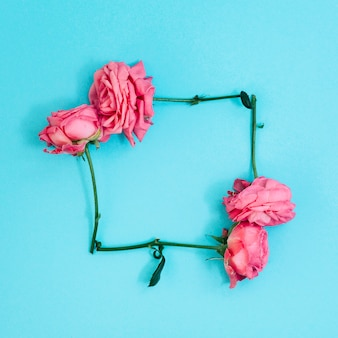 Square shape made from pink roses above turquoise background