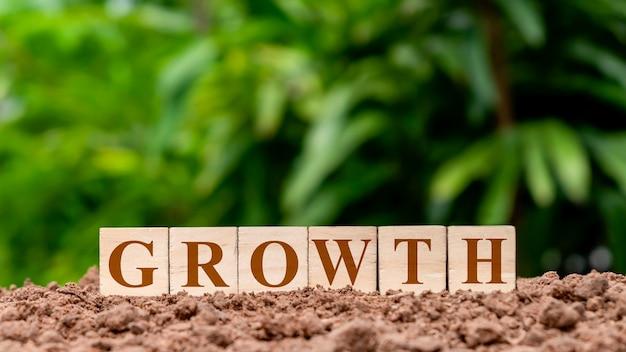 正方形の木製ブロックは、グラウンドマネーの成長の概念に基づいて成長とラベル付けされています。