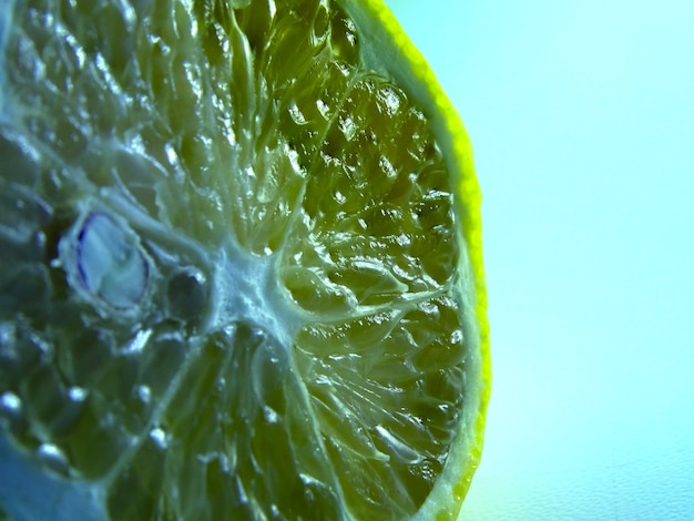 Squeezed old lemon on a white background