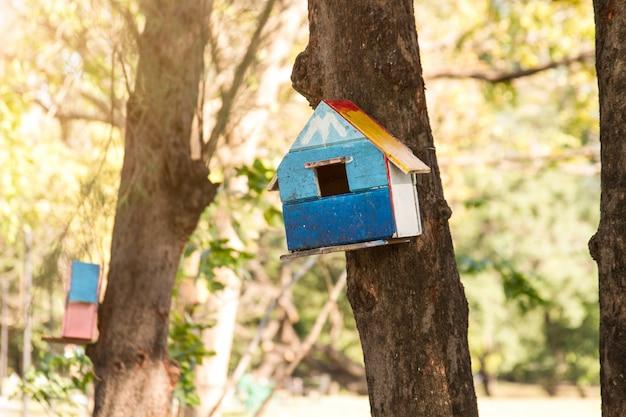 公共の公園で木の上のリスの家。