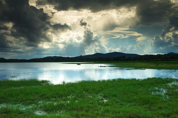 水上のスリランカ湖の風景の木