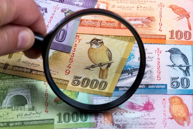 Sri lankan rupee in a magnifying glass a business background