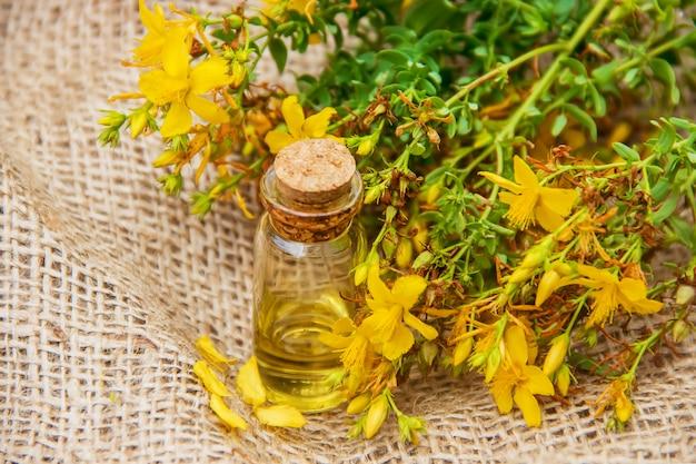 St. john's wort extract. medicinal plants.