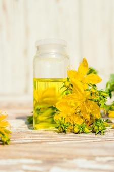 St. john's wort medicinal. homeopathy. selective focus.