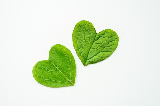 聖バレンタインデー。心は白い背景の葉からカットされます。