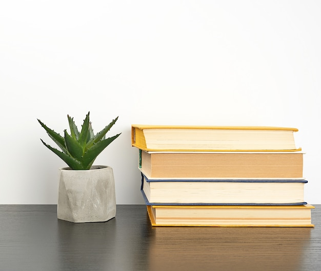 Stack books on a black table and a ceramic pot with a green plant