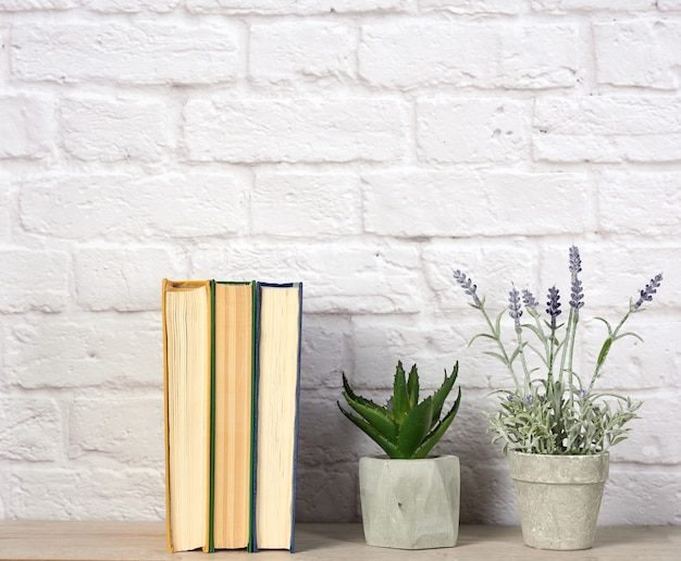 Stack of books and flowers in ceramic pots on white brick wall