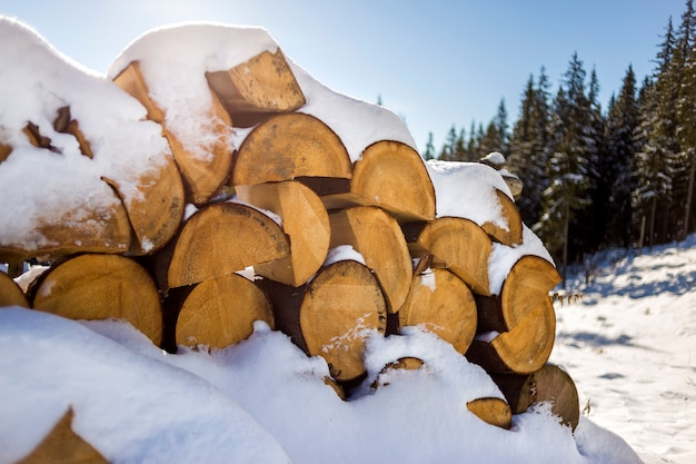 Stack of chopped dry trunks wood covered with snow