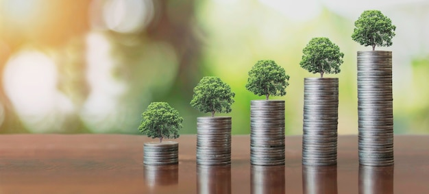Stack coins with plants to grow into steps. business growth concept