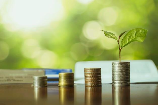 Сложите монеты с растениями, чтобы они выросли в ступеньки. концепция роста бизнеса