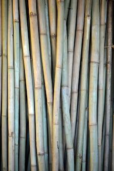 フェンス杭として使用される乾燥の竹のスタック