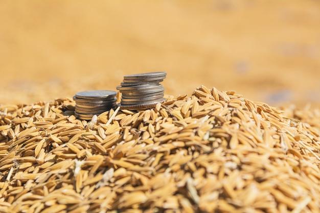 갈색 생 쌀된 쌀, 태국 쌀 배경에 동전의 스택.