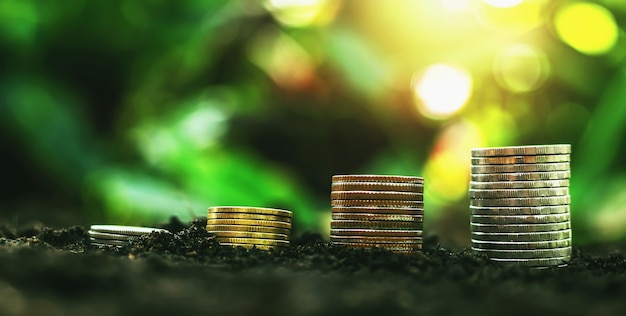 지상 자연 배경 흐림에 동전의 스택